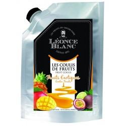 Coulis de fruits exotiques pasteurisé - 1 kg  (24)